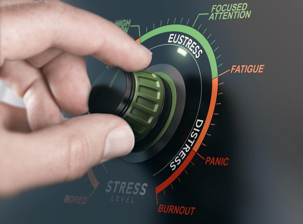 Intervaltraining op de loopband vermindert stress